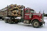 木材を搬入するトラック